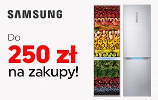 Samsung lodówki